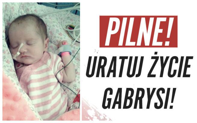 Gabrysia Bednarek
