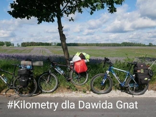 Dawid Gnat