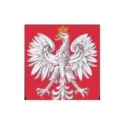 Komornik Sądowy przy Sądzie Rejonowym w Przasnyszu Michał Grabowski