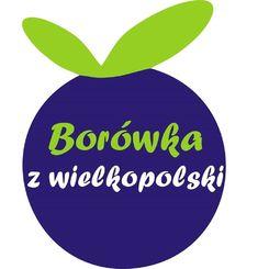 Plantacja Borówki z Wielkopolski