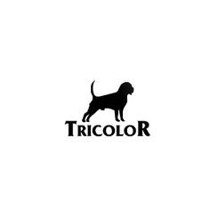 Karmy dla psów i kotów - Tricolor