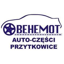 Behemot s.c.