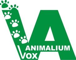 Medium vox1