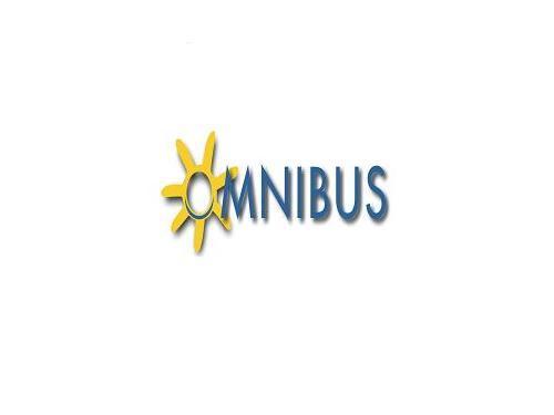 Stowarzyszenie Na Rzecz Wspierania Edukacji Dzieci i Młodzieży OMNIBUS