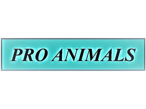 Fundacja Centrum Pomocy Dzikim Zwierzętom