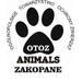 OTOZ Animals Zakopane
